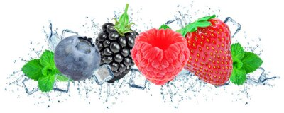 Obraz forest fruit berries splash water and ice cubes isolated on the white