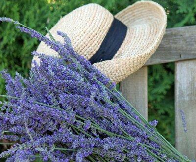 Obraz Fresh Cut Lawenda z Garden Hat