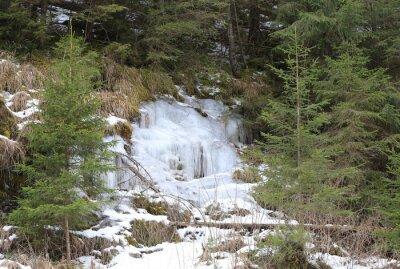 Frozen waterfall in winter forest