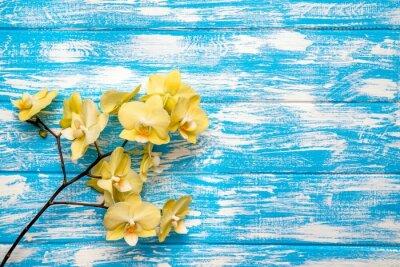 Obraz Gałąź żółte orchidee leży na niebieskim tle drewnianym
