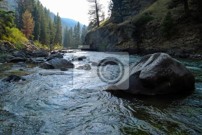 Obraz Gallatin River, Montana