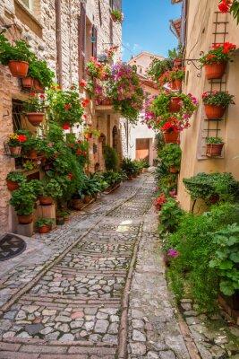 Obraz Ganek w małej miejscowości we Włoszech w słoneczny dzień, Umbria