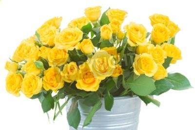 Garść świeżych żółtych róż z zielonymi liśćmi w metalowym naczyniu bliska na białym tle