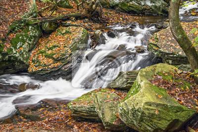 Glen Leigh Autumn Whitewater - Ricketts Glen, Pennsylvania