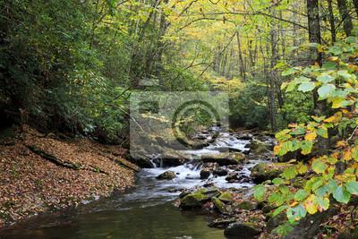 Obraz Gmach sądu Creek w North Carolina jesień