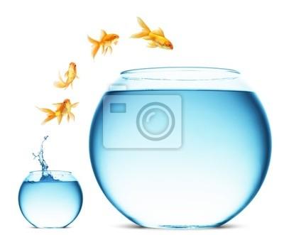 Goldfish skoków się z wody