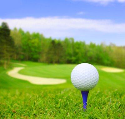 Obraz Golf ball on course