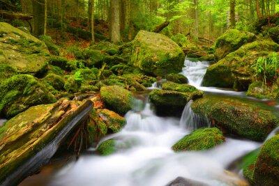 Górski potok w parku narodowym Sumava-Czechy