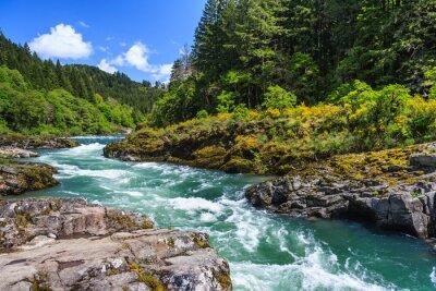 Obraz Górskie rzeki i lasu w North Cascades National Park, Waszyngton, USA
