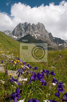 Góry Kaukazu - Chaukhi grupy górskiej