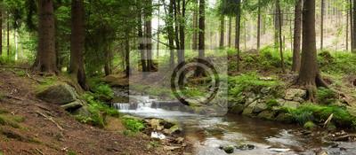 Obraz góry rzeki w lesie