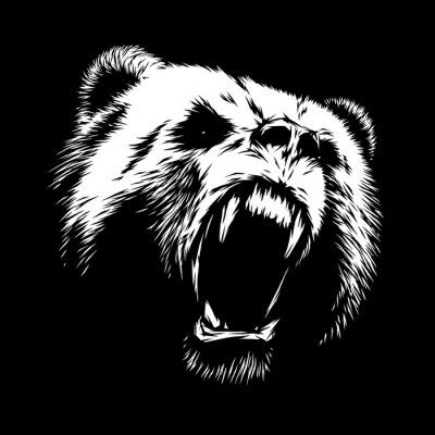 Obraz grawerować ilustracja niedźwiedzia