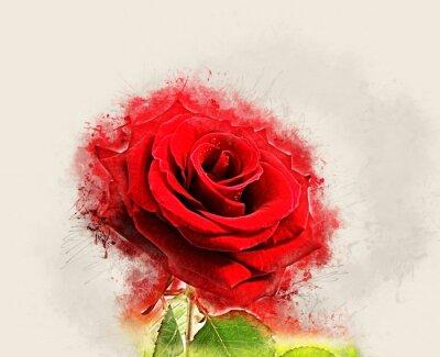 Obraz Grunge Rose zdjęcie