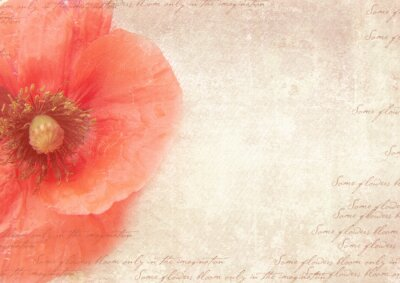 Obraz Grungy retro background with poppy flowers. A vintage styled collage with poppy flowers, faded handwriting on shabby old paper.  Postcard template.