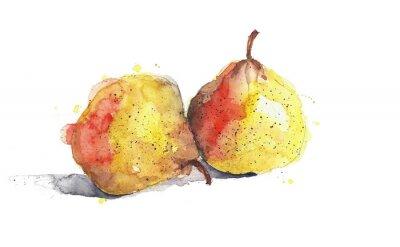 Gruszki żółte owoce akwarela ilustracji samodzielnie na białym tle