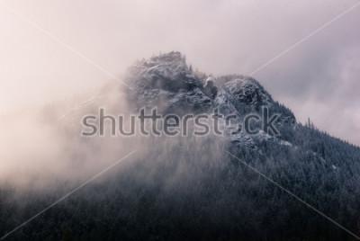 Obraz Grzechotnik w chmurach.