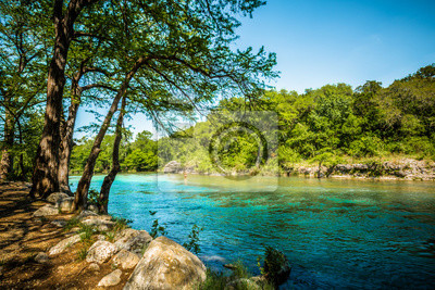 Obraz Guadalupe River New Braunfels, Teksas