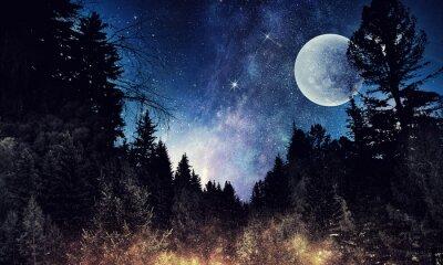 Obraz Gwiaździste niebo i księżyc. Różne środki przekazu
