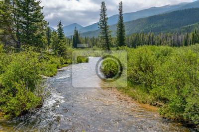 Obraz Halna lato burza - lato popołudniowa burza przychodzi nad lodowiec zatoczką i otaczającymi halnymi wzgórzami i zwartym lasem w Skalistej góry parku narodowym, Estes park, Kolorado, usa.