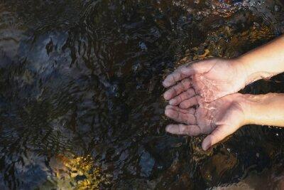 Obraz hand in water stream