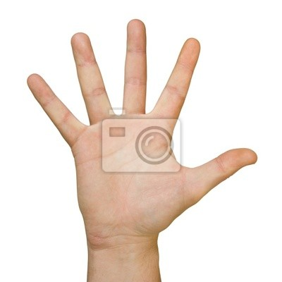 hand (palm)