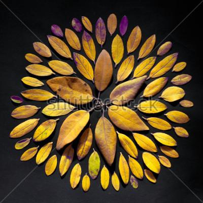Obraz Handmade liścia mandala mieszkanie kłaść na czarnym tle. Czeski układ mandali z liści.