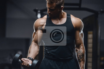 Obraz Handsome strong athletic men pumping up muscles workout fitness and bodybuilding concept background - muscular bodybuilder fitness men doing arms abs back exercises in gym naked torso.