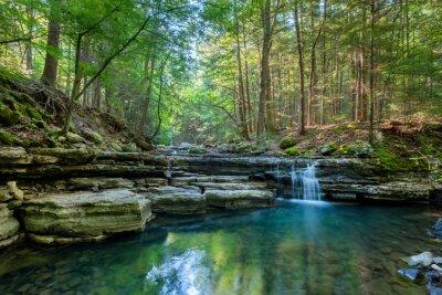 Obraz Hemlock Falls, Fall Creek Falls State Park, Tennessee