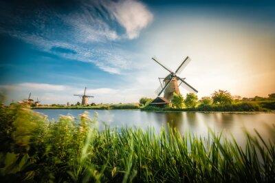 Obraz Historycy holenderskie wiatraki w pobliżu Rotterdamu