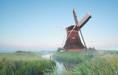 Obraz Holenderski wiatrak w świetle poranka
