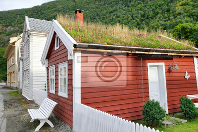House with grass on the roof at Laerdal, Norway