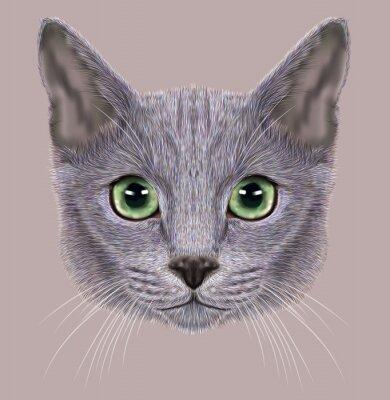 Obraz Ilustracja Portret rosyjskiej Blue Cat. Słodkie kota domowego z zielonymi oczami.