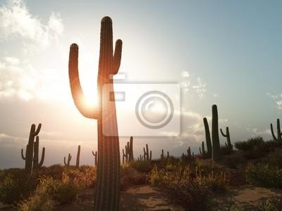 Ilustracja pustyni z kaktusa w Arizonie