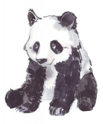 Obraz Ilustracja rysunek panda