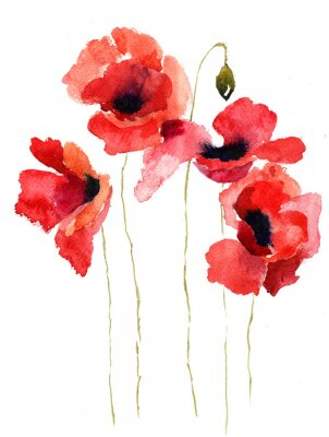 Obraz Ilustracja stylizowane kwiaty Poppy