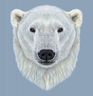 Obraz Ilustrowana Portret Polar Bear