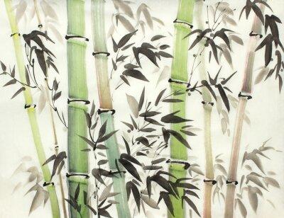 Obraz jasny las bambusowy
