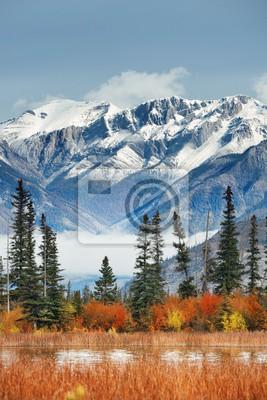 Obraz Jasper National Park Canada