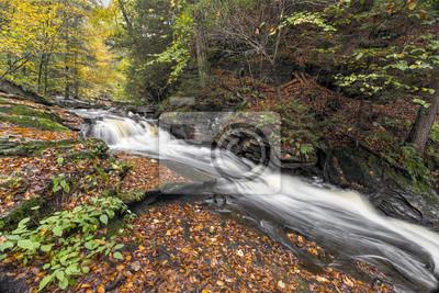 Jesień w Conestoga Falls - Ricketts Glen State Park, Pennsylvania