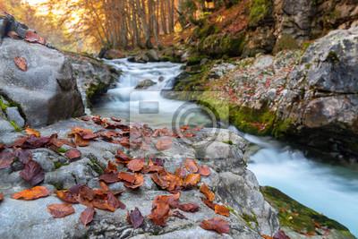 Jesień w Parku Narodowym Ordesa i Monte Perdido, Hiszpania