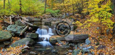 Obraz Jesienią creek panoramy