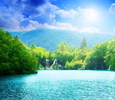 Obraz jezioro w głębokim lesie