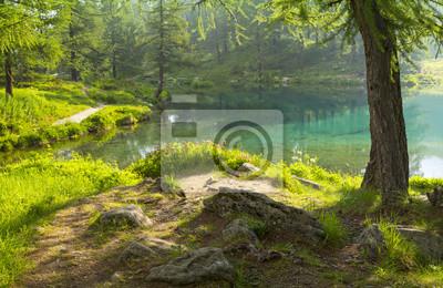 kamień łąka na jeziorze we Włoszech