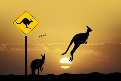 Obraz Kangaroo Znak ostrzegawczy
