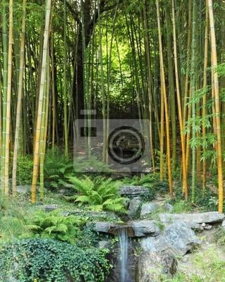 Kaskada spada w bambusowym gaju