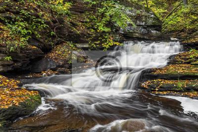 Kaskada w Ganoga Glen - Ricketts Glen State Park, Pennsylvania