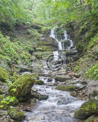kaskady wodospadu ze skały w lesie
