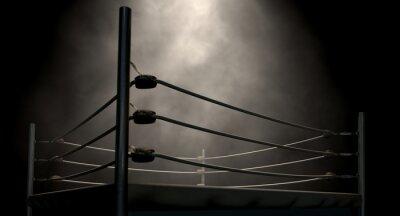 Obraz Klasyczny w stylu vintage ring bokserski