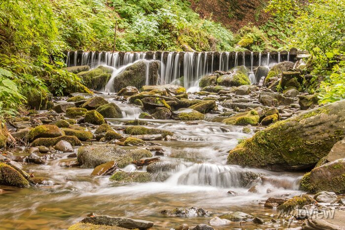 Obraz Kolce wodospadu.
