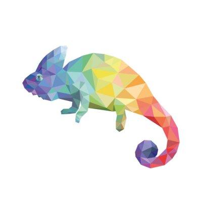 Obraz Kolor kameleon